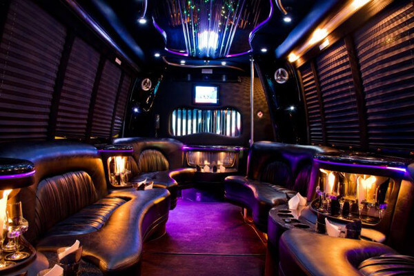 15 Person Party Bus Rental Metairie