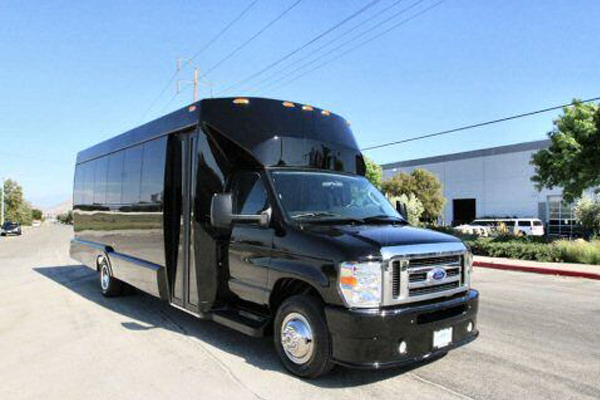 20 Person Party Bus Metairie